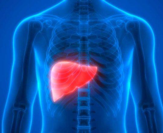 28 de Julho: Dia Mundial Contra as Hepatites Virais