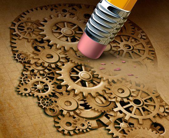 As diferentes estruturas cerebrais são as culpadas pelas alucinações?