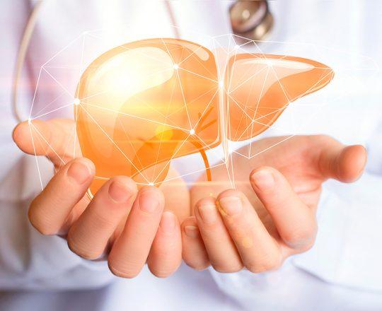 Câncer de Fígado: Pouco prevalente, mas muito agressivo