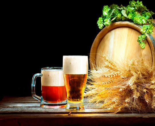 Composto encontrado na cerveja diminui ganho de peso e reduz o colesterol