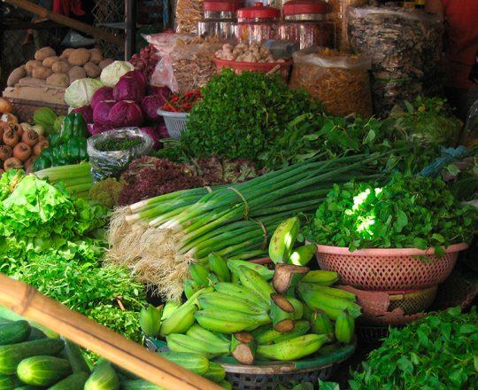 Dieta rica em folhas verdes pode reduzir o risco de glaucoma