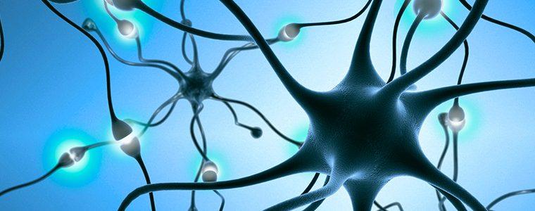 Esclerose Múltipla pode ser evitada com remédio para epilepsia