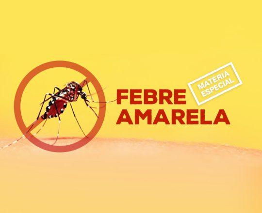 Febre Amarela: Brasil confirma 604 casos