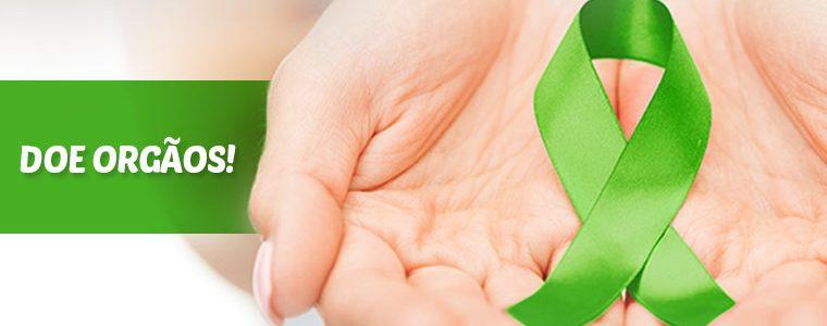 Transplante de Fígado pode ser feito entre duas pessoas vivas