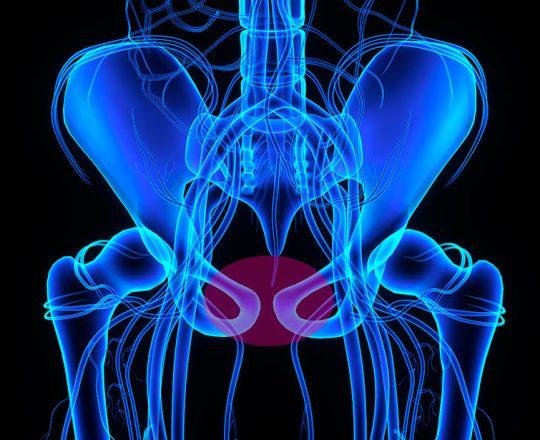 Você sabia que a pubalgia pode interferir na performance sexual?