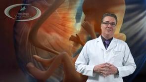 A embolização de Miomas pode afetar a fertilidade da mulher?
