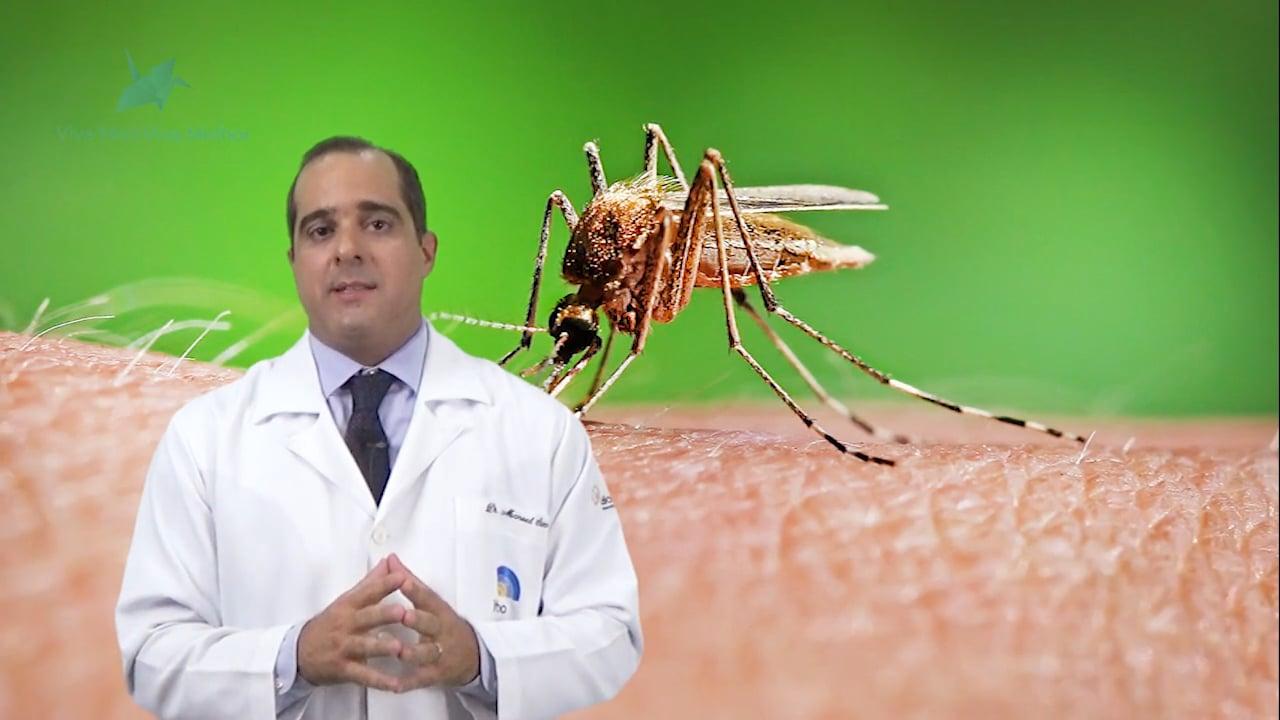 Como ocorre de transmissão do Zika vírus?
