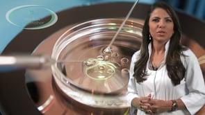 O que é a fertilização in vitro?