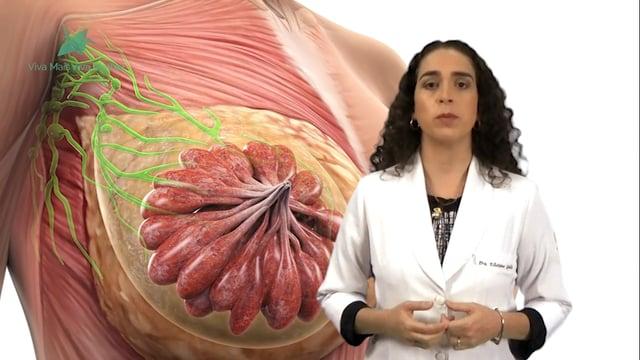 Qual a importância do diagnóstico precoce do câncer de mama?