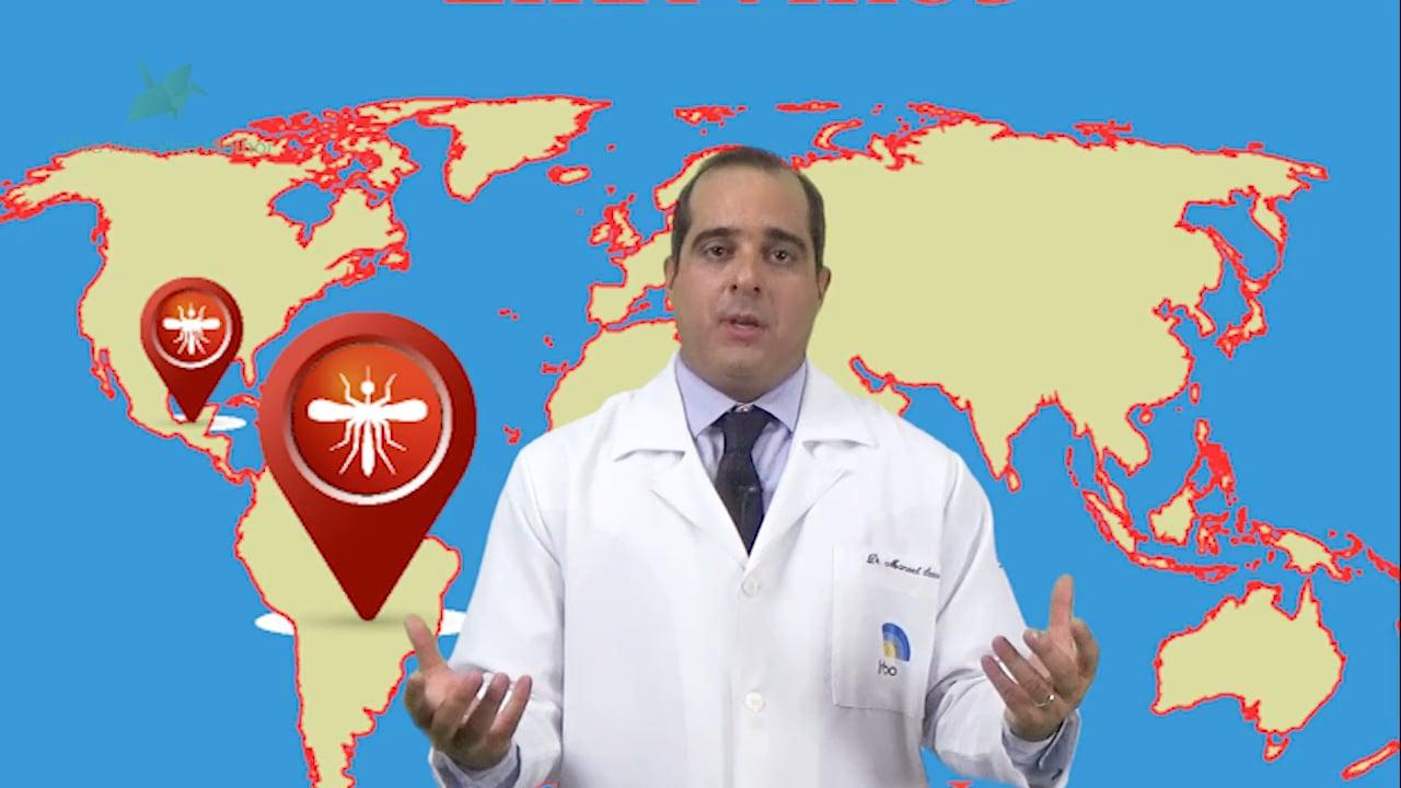 Qual a relação entre o Zika vírus e a microcefalia?
