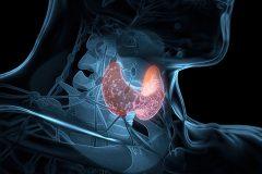 A importância da consulta com um endocrinologista